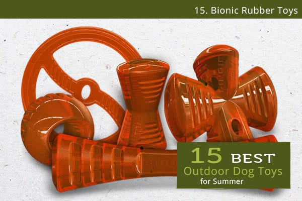 Bionic Rubber Toys - Best Outdoor Dog Toys for Summer