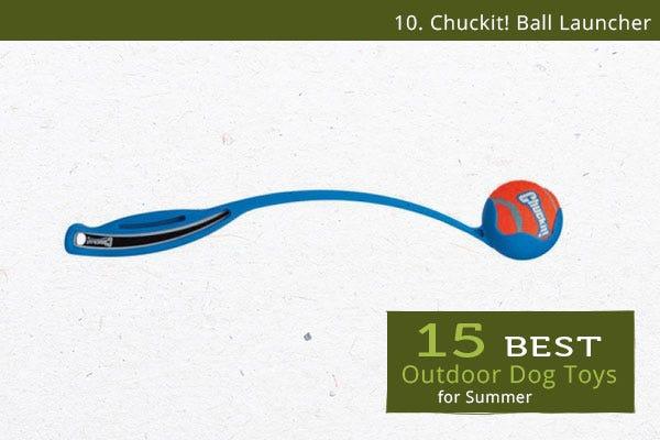 Chuckit! Ball Launcher - Best Outdoor Dog Toys for Summer