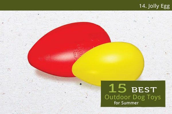 Jolly Egg - Best Outdoor Dog Toys for Summer
