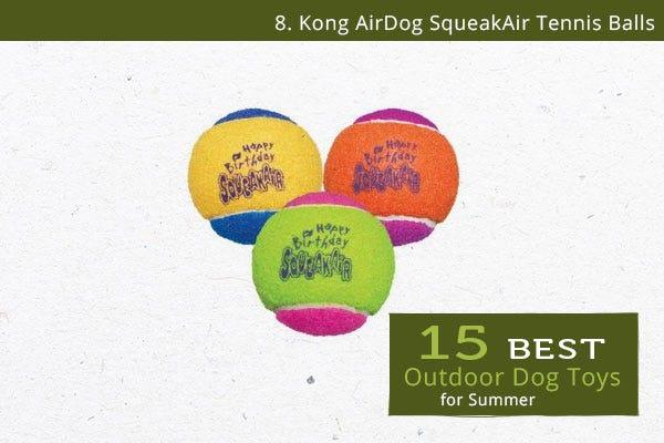 Kong AirDog SqueakAir Tennis Balls - Best Outdoor Dog Toys for Summer