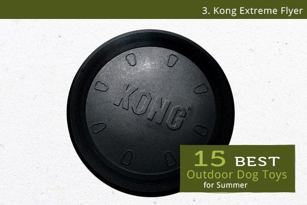 Kong Extreme Flyer - Best Outdoor Dog Toys for Summer