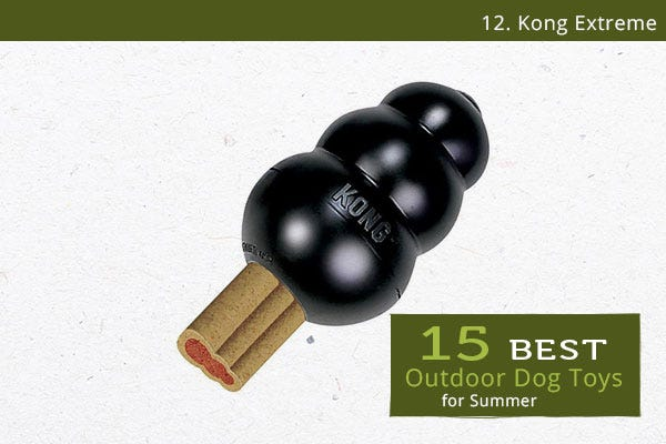 Kong Extreme - Best Outdoor Dog Toys for Summer