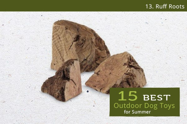 Ruff Roots - Best Outdoor Dog Toys for Summer