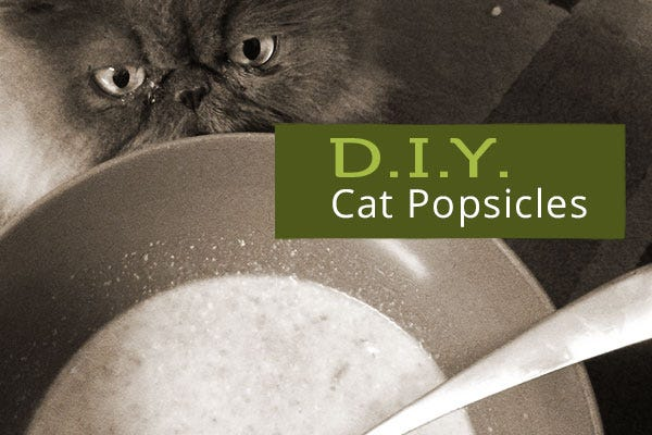 Homemade Cat Popsicles