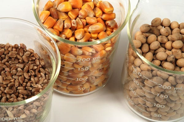 Dog Food Fillers - Corn, Wheat, Soy