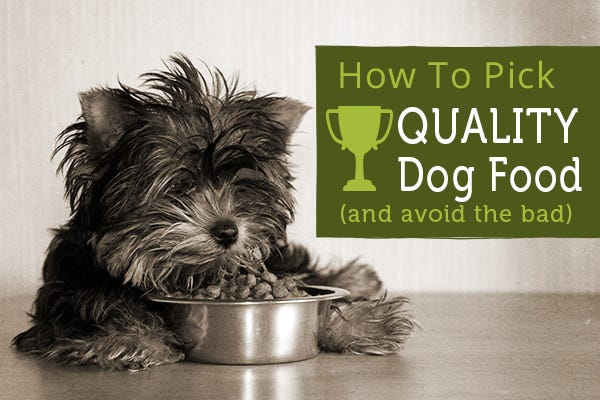 How To Pick Quality Dog Food (And Avoid The Bad)