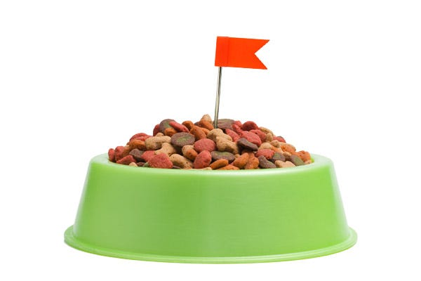 Red Flags of Poor Quality Dog Foods