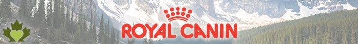 Royal Canin Canada Dog Food