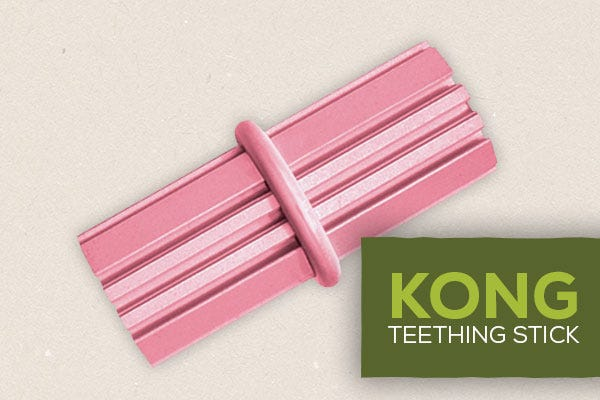 Kong Teething Stick