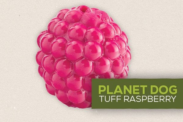 Planet Dog Tough Raspberry