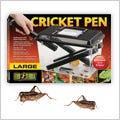 Free Crickets