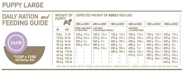 Orijen Large Breed Puppy Feeding Chart