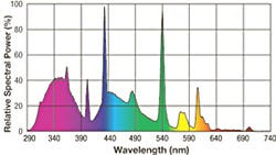 Exo Terra Repti Glo 10.0 Wavelength Chart